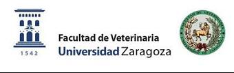 Logo Zaragoza