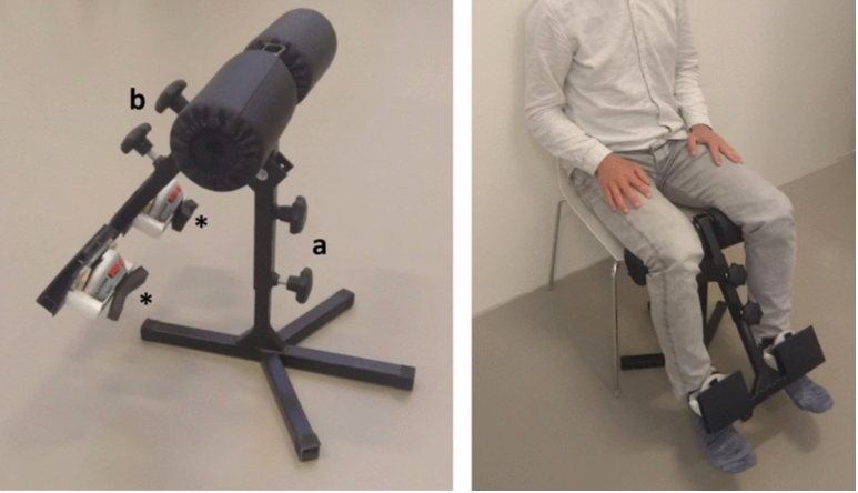 Towards remote muscle strength measurements using a newly developed portable fixed dynamometer
